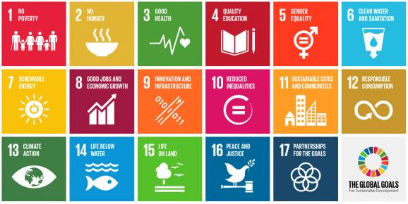 UN Development Goals | Ecozine