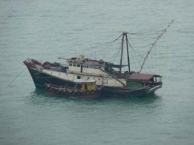 How To Tell If A Trawler Is Trawling? | Ecozine